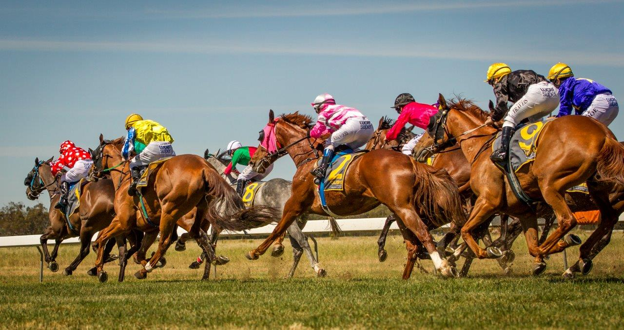 Golden Fleece Races
